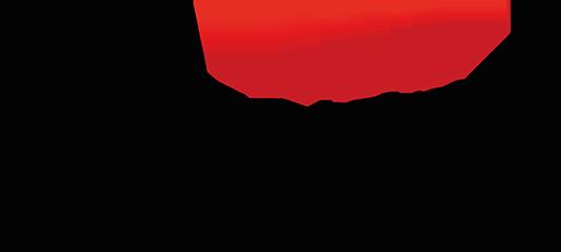 De Storm Logo Footer (002)